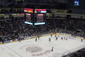 14: Created in 1932, the Hershey Bears Hockey Club is the oldest team in the American Hockey League. Image: https://creativecommons.org/licenses/by-nd/2.0/