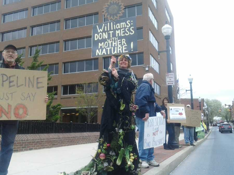 One woman donned a Mother Nature-centric costume at the protest.