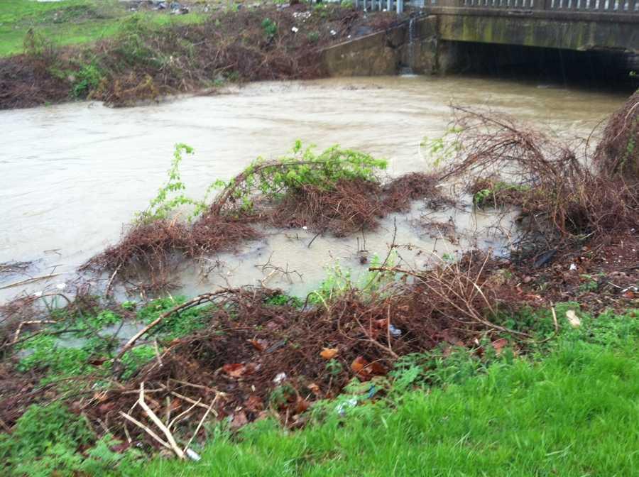 Little Conestoga Creek, Lancaster Township, Lancaster County Wednesday 1:30 p.m.