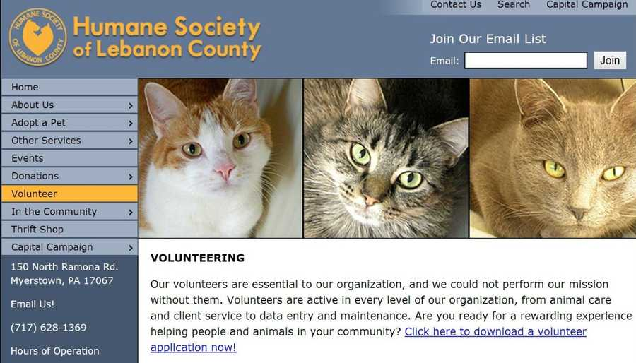 Volunteers are essential at the Humane Society of Lebanon County from animal care to client service. Go to www.lebanonhumane.org to learn more.