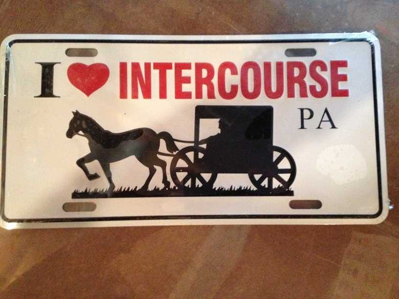 "A front license plate featuring an Amish buggy and the phrase ""I love Intercourse, PA."""