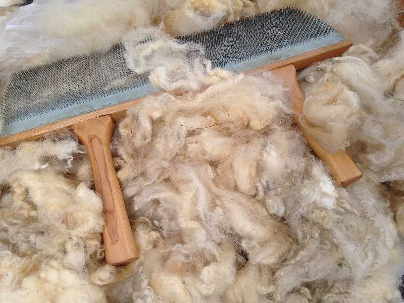 The group specializes in yarn, fiber and roving from rare breed and locally raised sheep as well as other fiber producing animals.