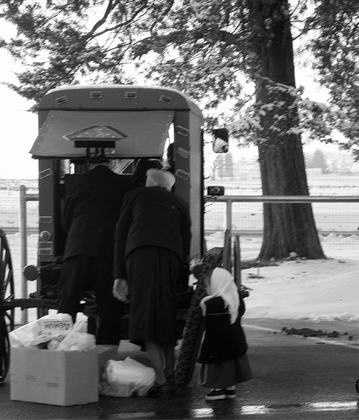 Amish are usually Tri-Lingual, speaking English, Pennsylvania Dutch and German.