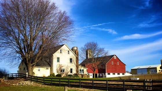 "The ""Lancaster Settlement"" is the largest in the nation, but includes Amish in Lancaster, Chester and York counties."