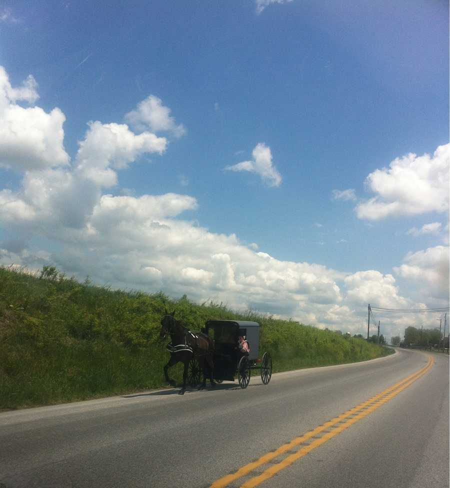 There are Amish living in 31 states across the U.S.