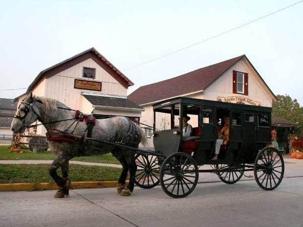 How much do you know about the Amish?