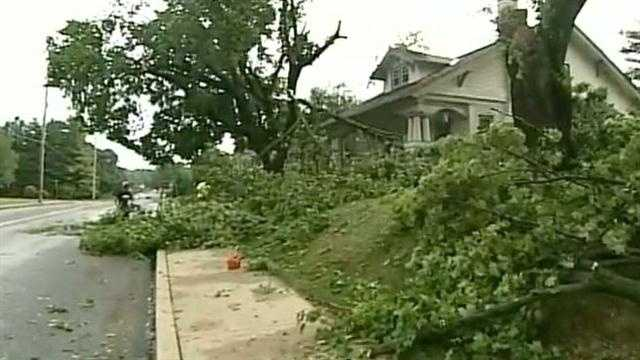 Tree branches litter the streets in Manheim.