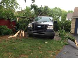A tree fell on a car at Oak and High streets in Manheim, Lancaster County.
