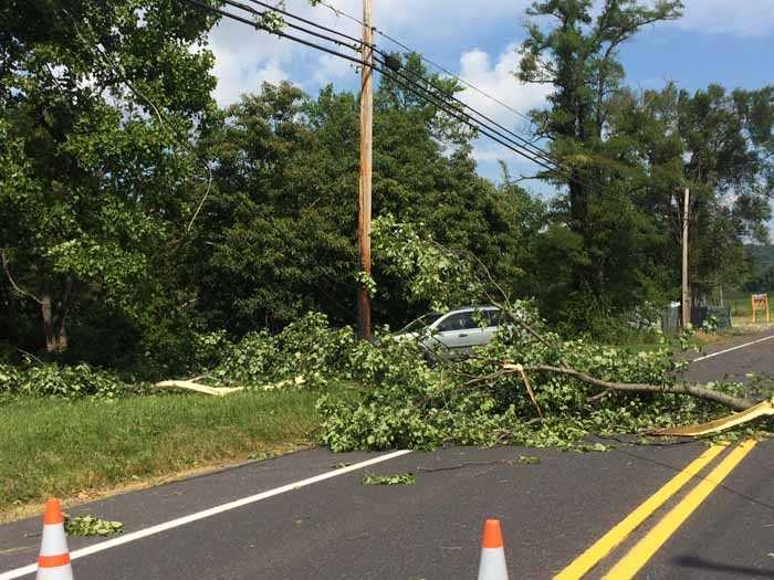Downed lines on Route 74 in York County, Wednesday morning.