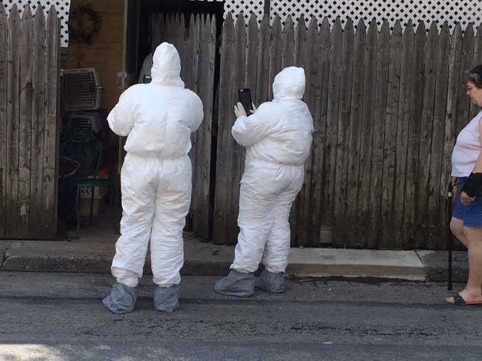 Officials have described the case as a hording situation and there's also a flea problem.