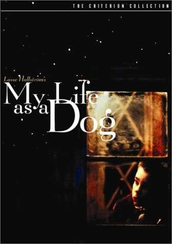 7. My Life as a Dog