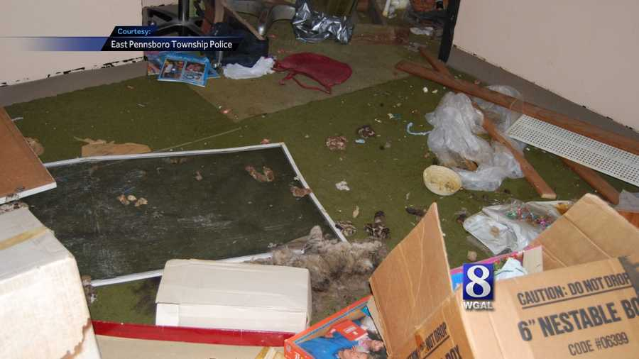 East Pennsboro Township police say a man and a woman forced their children to live in a house with the most deplorable conditions they've ever seen.