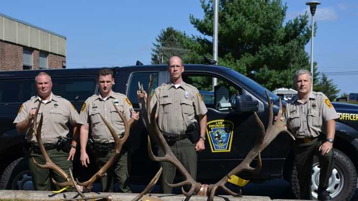 A huge bull elk was illegally shot earlier this month in Clearfield County, according to Pennsylvania game officials.