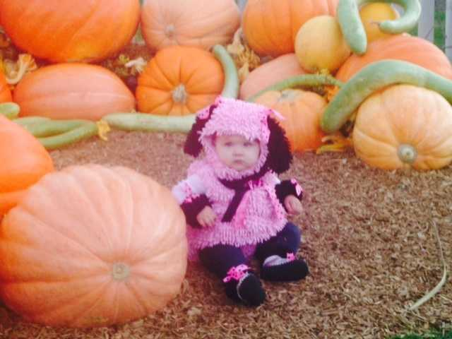 She may be wearing pink, but she still fits right in with these pumpkins!