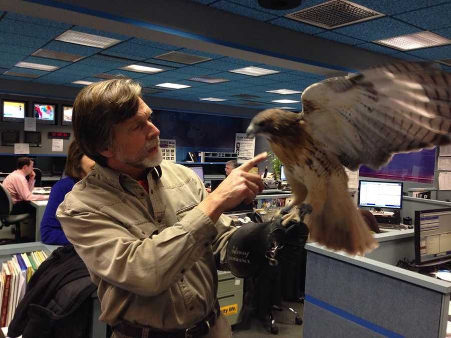"""When """"Wild Moments"""" host Jack Hubley stops into the News 8 newsroom, you never know who will accompany him!"""