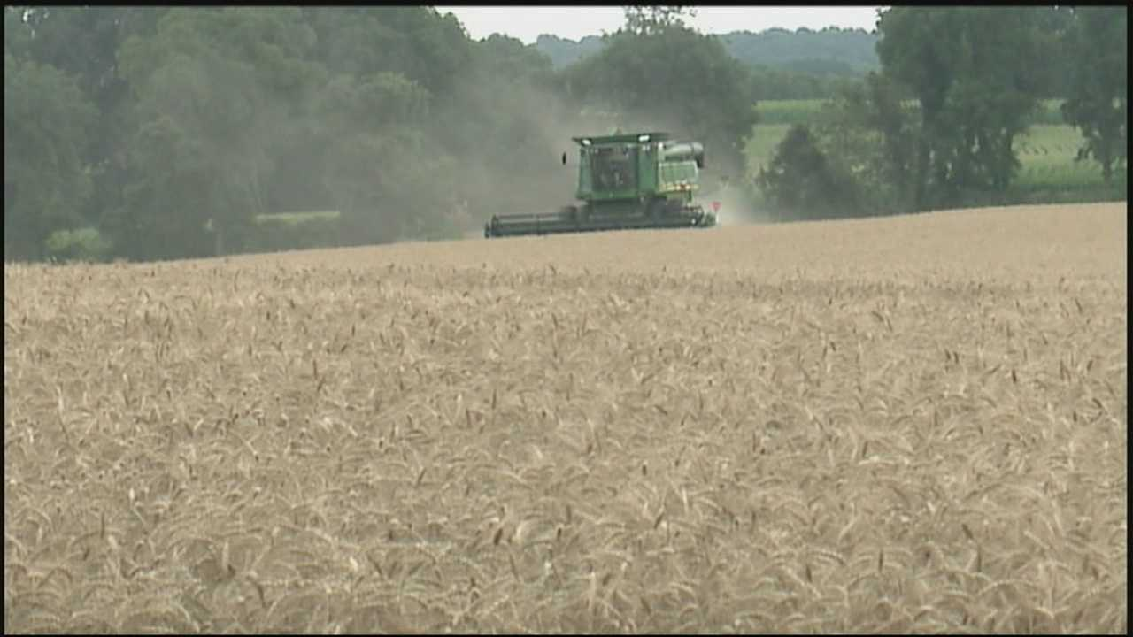 EPA rules that seek to limit fertilizer runoff will cost too much money and may force farmers to give up some land, according to some Susquehanna Valley growers.