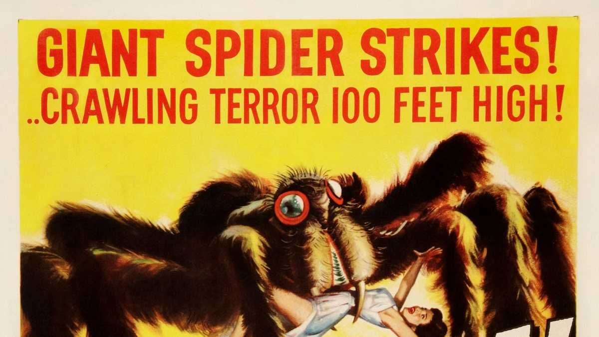 Bugged by spiders? This one will eat your house!