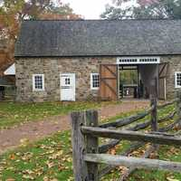 The Pennsbury Manor barn is home to sheep, a steer, a cat and other animals.