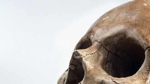 skull-517594_960_720.jpg