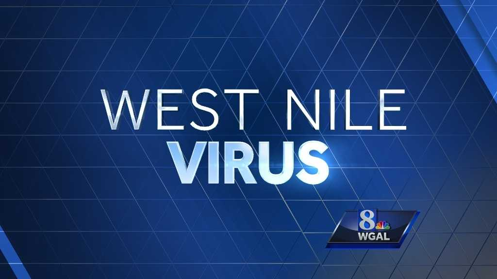 West-Nile-GRAPHIC-6-30-15.jpg