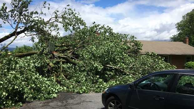 6.8.16 storm damage 02.jpg