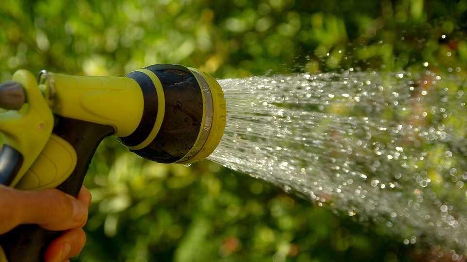 watering-1601143_960_720.jpg