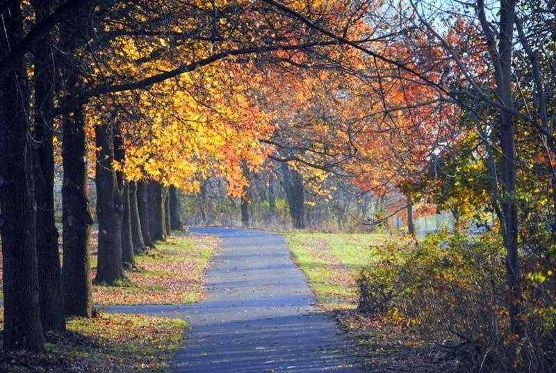 Autumn is a beautiful time of the year in the Susquehanna Valley, and you may want to capture the autumn leaves with your camera.
