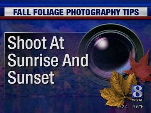 """2. The best time to take photos is sunrise and sunset, or as photographers call them """"The Golden Hours"""""""
