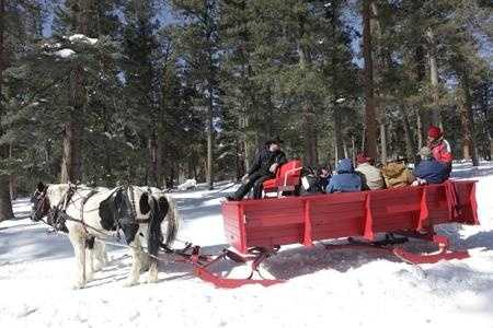 5. A one-horse open sleigh. Yes, you've been meaning to get the horse but …