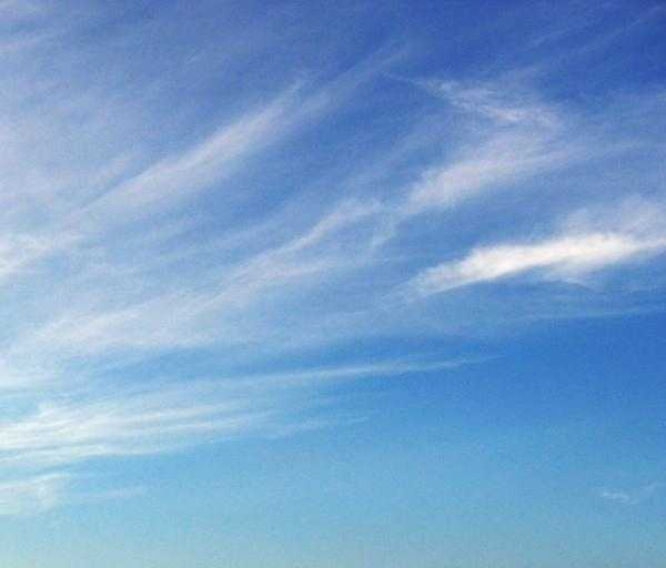 Cirrus clouds usually indicate a change in the weather will occur within 24 hours.