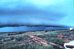 Shelf clouds are low, horizontal wedge-shaped clouds that are associated with a thunderstorm gust front.