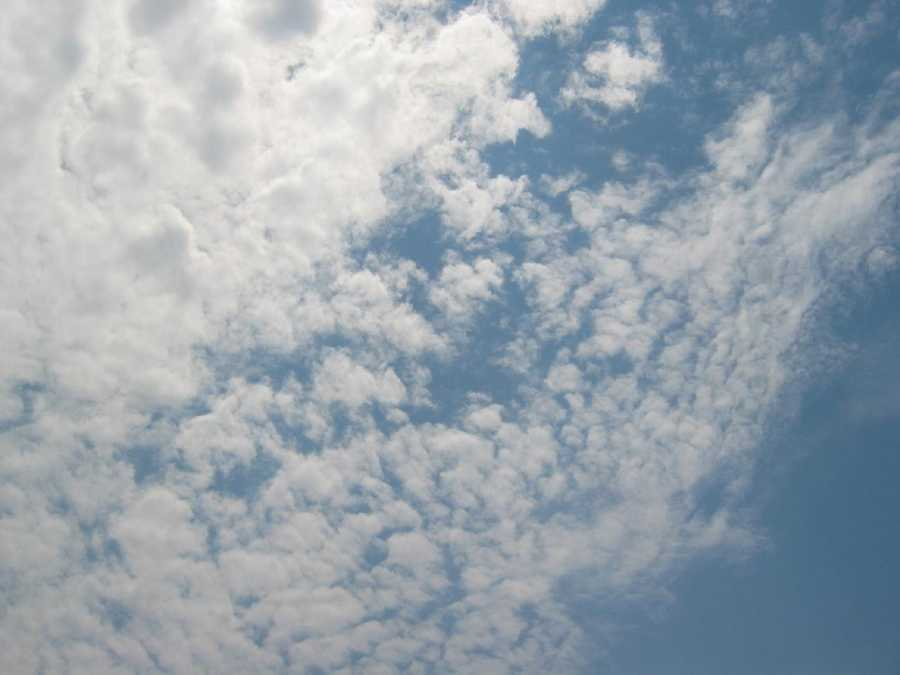 Altocumulus clouds are made up of water droplets and look like gray puffy masses.