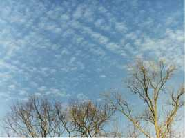 Cirrocumulus clouds are small, rounded white puffs that appear in long rows.