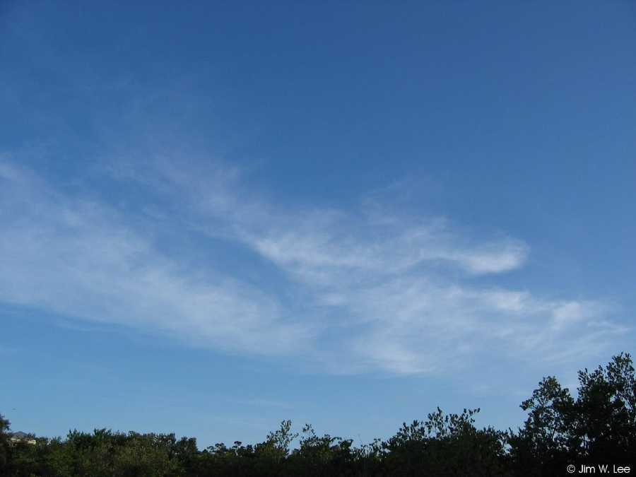 Cirrus, the most common of high clouds, are made up of ice and are thin, wispy clouds blown in high winds into long streamers.