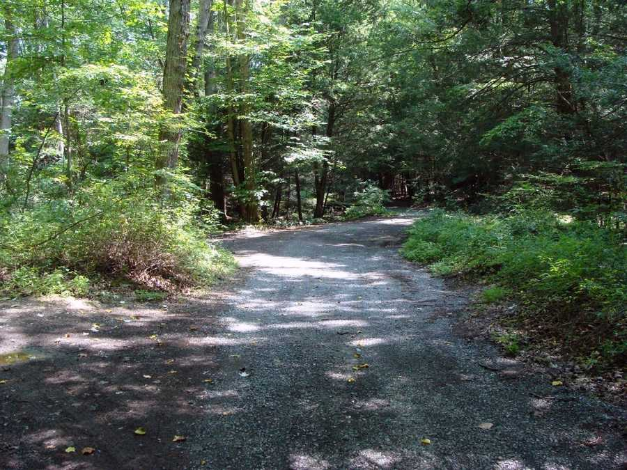 The park is located in Lebanon and Schuylkill counties and is 14 miles north of Lebanon and 3 miles west of Pine Grove.