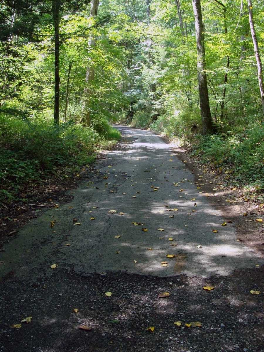 Visitors should be aware of the deteriorating road, loose and broken surface material, and rough conditions.
