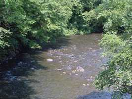 Warm-water fish, including smallmouth bass and panfish, can be caught in Swatara Creek.