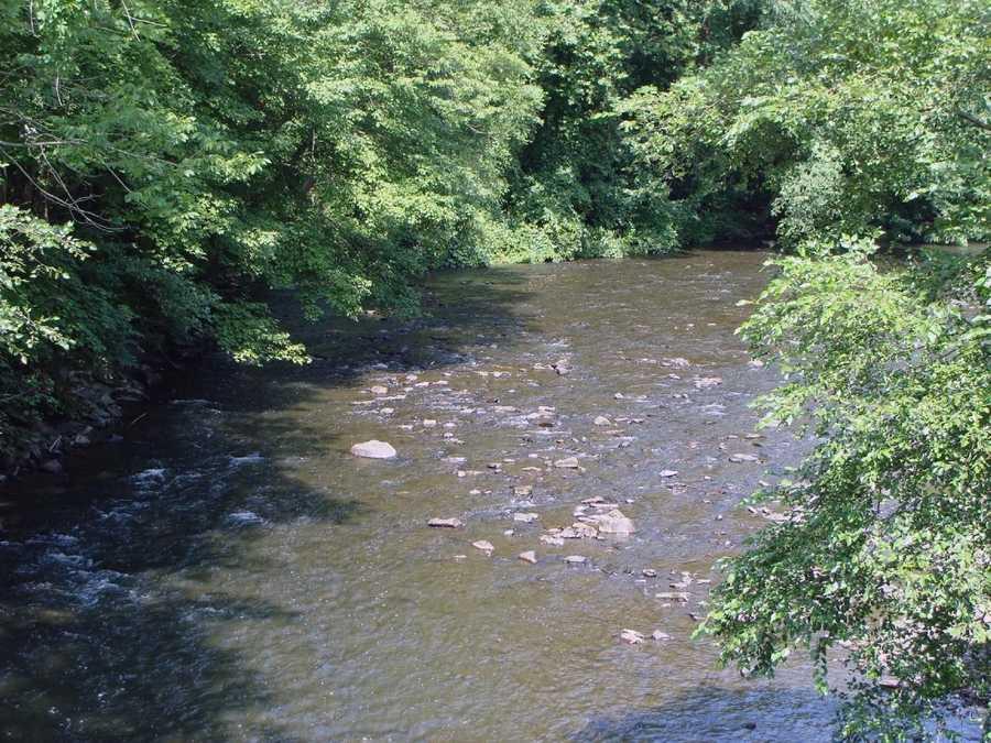 Warm-water fish, including smallmouth bass and panfish, can be caught in Swatara Creek.