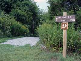 The Hillside Trail (0.25 mile) leads from the Overlook to a fishing access area and ends at Memorial Lake Road.