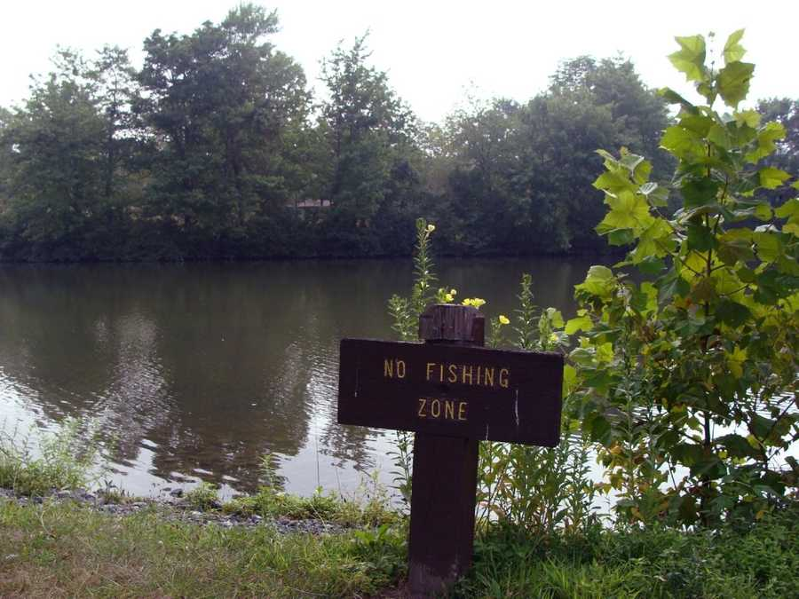 No fishing zones include the boat concession area, the boat mooring area ...