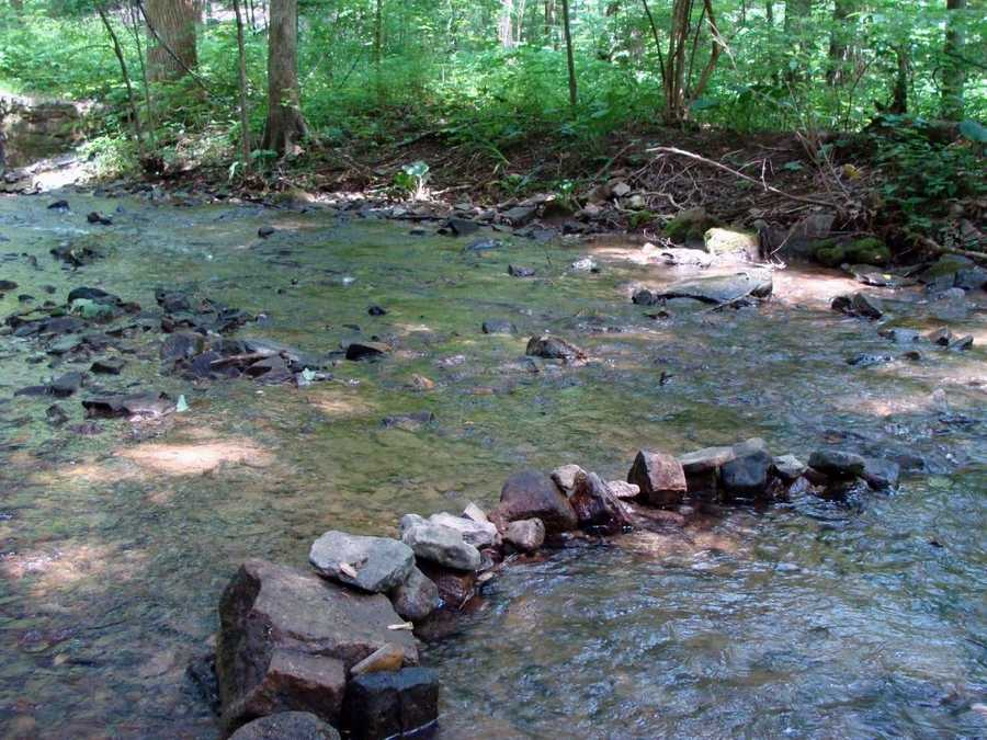 The shallow water of Little Buffalo Creek is easily warmed by the sun, making a warm water fishery.