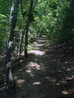 The park has approximately eight miles of hiking trails. Sturdy footwear is recommended because of rocky footing on some of the trails.