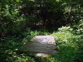 One mile from town, turn right onto Little Buffalo State Park Road. From Route 322, the park entrance is 4.6 miles.