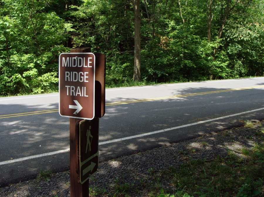 The Middle Ridge Trail runs from the Exercise Trail to the west end of the park.