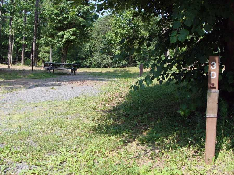 There are 40 sites, some of which have electric and water hook-ups. All campsites have a picnic table and fire ring. Pets are permitted on all campsites.