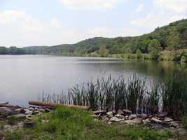 The 88-acre lake provides habitat for many animals, including green herons, egrets and beavers. Click for a slideshow of lake photos.