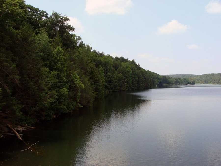 Brook, brown, and rainbow trout, and fingerlings of tiger muskellunge are stocked several times a year.