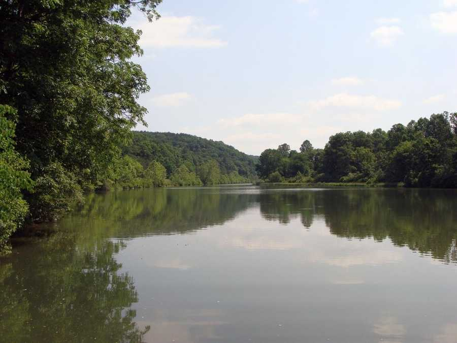 Although trout tolerate the water, largemouth bass, black crappie and sunfish thrive.