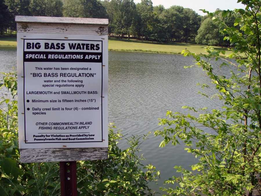 """The lake is designated as a """"Big Bass Lake."""" Bass must be at least 15 inches long with a daily limit of four."""