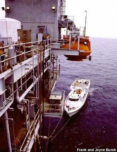 Platforms in the Gulf of Mexico are a favorite dive site for adventurous scuba divers. This production platform, located just one mile east of the East Flower Garden Bank, is home to a diverse and rich biological community -- more so than others in the Gulf, due to the close proximity of the Flower Gardens.